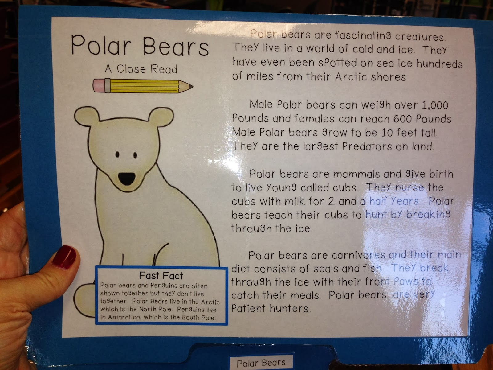 Welcome To The Schroeder Page Close Reading With Polar Bears